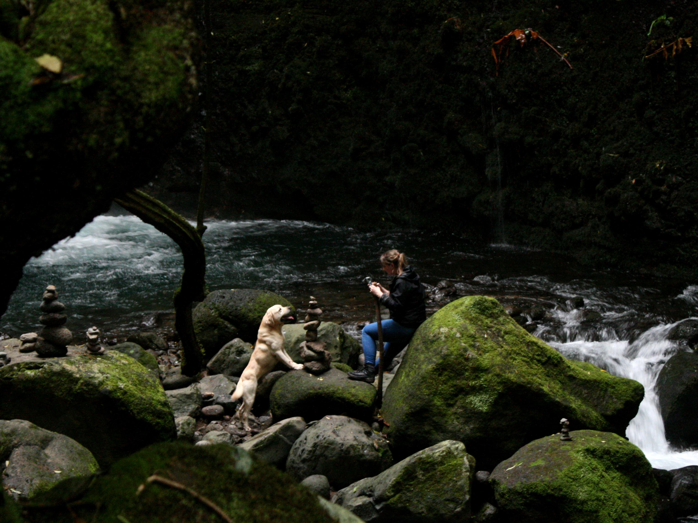 Wasserfall mit Hund Sao Miguel Azoren Wandern