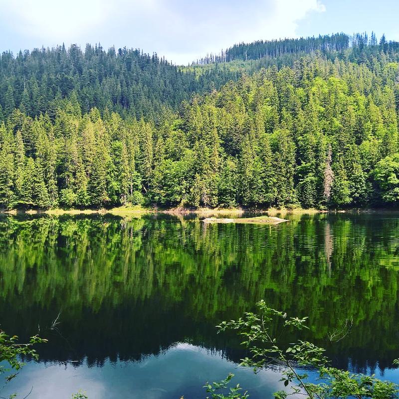 Lake Syvenir Ukraine natur karpaten