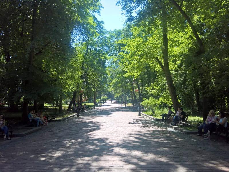 Stadtpark Lviv