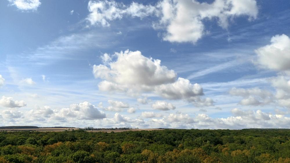 tipps bad langensalza nationalpark wartburg hainich baumkronenpfad