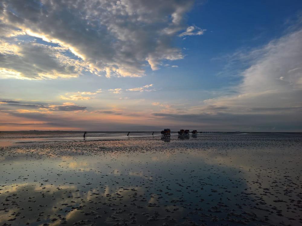 nordsee wattenmeer