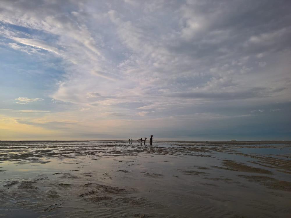 nordsee wattenmeer weite sicht