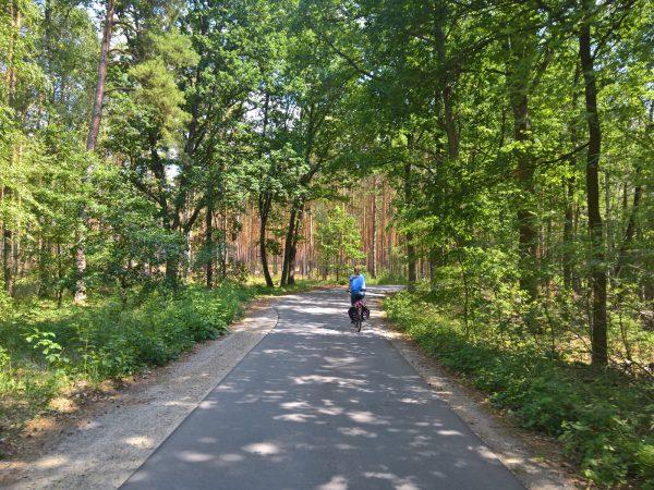 Berlin Spreewald Radtour